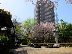 亀戸から押上方面に向かうと龍眼寺(りゅうがんじ) 別名「萩寺」 春の季節も静かな佇まい