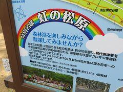 次に、唐津へと移動。 日本三大松原の一つ、虹の松原へ。  福井県敦賀市気比の松原へ、去年末に 行ったばかりなので、ご縁がありますね。