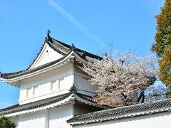二条城  西本願寺から地下鉄に乗るために二条城のところまでバスで移動。 青空を背景に桜と二条城が迎えてくれました♪