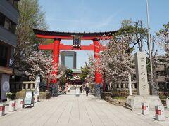 富岡八幡宮の桜は、本数少なかったです。