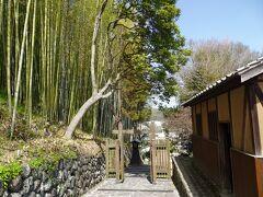 食後の腹ごしらえに城下町をちらっと散策します。 青々とした竹林が印象的な番所の坂。