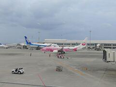 那覇空港の制限エリア内に入り、サクラジンベエを撮影。