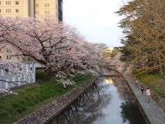 2021/04/02 在宅ワークを終えて富山駅へ。途中松川辺りの桜を見て来ました。 散り始めている感じで、見頃は過ぎていました。