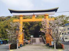 この日の目的地は新田神社。薩摩国一の宮として呼ばれた風格を今でも残している。 川内駅から前日も利用した「くるくるバス」に乗り二の鳥居(上の写真)前のバス停で下車した。