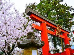 氷室神社 http://www.himurojinja.jp/  ここは氷の神様を祀る神社なんだって。 夏限定でかき氷を奉納するんだとか?宮司の手によるかき氷を献氷した後には用意されたシロップをかけてお下がりを頂くのだそう。 そう言えばかき氷って奈良が発祥なんだよね?