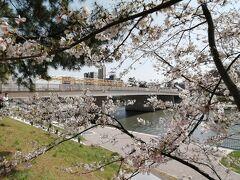 桜まつりの開かれている岡﨑公園へ向います。 が、その前に乙川沿いの桜を鑑賞。 「桜城橋(さくらのしろばし)」を渡ります。