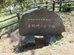 さて真鶴岬の先端にある三ツ石を見学しましょう。