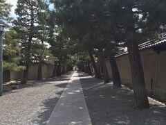 大徳寺です。