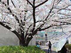 東海道線が走る線路沿いの大井水神公園