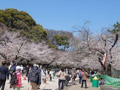 上野公園の満開の桜. 緊急事態宣言も解除されたので,かなりの人出でした.
