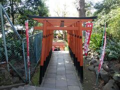 花園稲荷神社の赤の千本鳥居. とても千本はなく,30本くらいでしょうか.