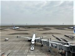 年末年始以来、久しぶりの羽田空港です。 この日は少し曇り空でした。