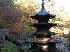 国宝 八角三重塔(安楽寺/日本最古の禅宗様建築)です。木造八角三重塔は、木造の八角塔としては全国で一つしかないという貴重な建築だそうです。昭和27年3月29日、文化財保護法の規定により長野県では一番早く国宝に指定された、とボランティアガイドさんが説明してくれました。