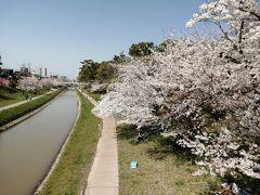 岡﨑公園にやってきました。 ここが伊賀川と本流である乙川の合流地点。つまりは伊賀川の終点。ここから川沿いを遡って行きます。