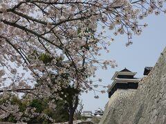 やや!桜だ!城だ! 園内図によると右に見えるは太鼓櫓だね。 高石垣が見事!