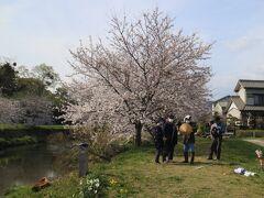 音羽川桜並木  両岸に桜が植わっていて 良い感じの場所ですね 到着早々 艦長は囲われていたけど どこでも、誰とでも すぐに仲良くなっちゃいますね