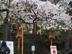 新倉山浅間公園に到着。 本日桜祭りの初日と言うこともあり混雑を避けて7時にはこちらに到着するように早起きしてきました。