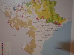 民族学博物館で、少数民族のお勉強。 一番刺激的なスポットでした。  まずはベトナム北部の地図。