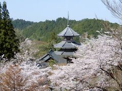 蔵王堂から眺める 吉野朝宮跡