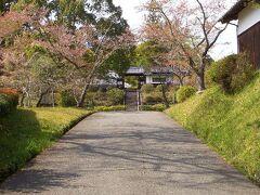 久保田亭~芳徳寺  芳徳寺の山門です。このアングルの満開の桜を期待して来たのですが...。