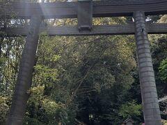 お次は高千穂神社!
