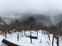 須賀川市から1時間半ほどで、三島町到着。 道の駅尾瀬街道みしま宿から、山を登ってお立ち台到着。 雪ある!少ないけども。