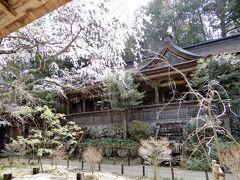 桃山時代のとっても美しい社殿の   『吉野水分神社(よしのみくまりじんじゃ)』    今日はここまで、この先の奥千本はまだ蕾なので行きません