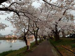 高田公園に到着。