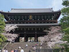 左に折れて知恩院へ。  見事な三門の左右にも桜。