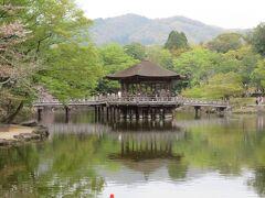 池に綺麗に写ってる。 奥に見える山は原生林で覆われており、宮崎駿が入山?撮影?を申請したが、許可が下りなかった山。屋久島が舞台のモデルになったと言われるもののけ姫。この奈良の山がモデルになったと言われていたらどうなっていたのでしょうね。