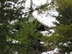 五重塔が見える位置で止まります。木が邪魔してあまり見れませんでした。 もうちょっと位置ずらしてとも言えず。。 ここでクイズ。五重塔は何階建てでしょう。 3階建てと答えた私。お~と言われたので近いのかと思ったら1階構造でした。5より下を言う人が少ないらしいです。