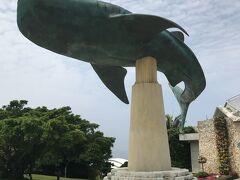 沖縄美ら海水族館に到着。 JALツアーのオプションで500円だったので、1人で行くのはどうかと思ったけど来てしまった。