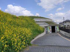 11:25 将軍山古墳には展示館が設置(入場料は博物館本館と合同で200円) 6世紀後半の古墳