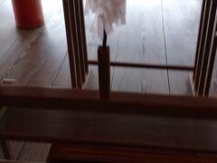 厳島神社に参拝です。 玉串でお祓いです。