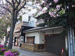 駅前の老舗天ぷら店天吉 八重桜と和風の建物が合いますねえ。 こちら、 サザンの原由子さんの実家。