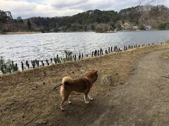 13:15、国指定史跡・名勝「南湖公園」 到着