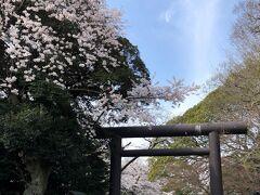 常磐神社です。