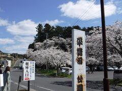 仙台から北へ1時間半位走って 登米市へ。 まずは、平筒沼(びょうどうぬま)ふれあい公園へやってきました。