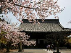 真如堂は、ゆったりした境内に堂々とした本堂と三重塔があり、季節の花々が咲き、大好きなお寺さんです。