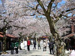 イベントとしての桜祭りはコロナ禍で中止されたが、町の雰囲気は祭りそのものだ。陽気に誘われるかのように多くの人々が。