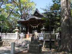 JR逗子駅と京急逗子・葉山駅の間、逗子市役所横にあるこの神社は亀岡八幡宮。なだらかな亀の甲羅の様な場所にある事と、鎌倉の鶴岡八幡宮に対して名づけられた様です。この前の美咲町の亀甲岩に次いで亀と名前が付く場所に来ている気がします。 逗子市役所の横にある神社ですが、境内も広く落ち着いた雰囲気の神社でした。
