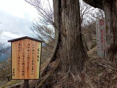 11時ピッタシ 富士見台 標高1062m 二十丁目と書かれた道標あり。 富士山は全く見えず。