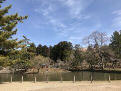 東大寺 鏡池も、青空に映えています・・