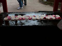 その途中の石浦神社境内では屋台も出ていて賑わっていたので寄り道。