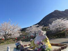 定点観察へ伊香保へ。  桜が満開という情報をキャッチしていたので佛光山法水寺を目指します~ 近くの水沢観音辺りも満開の桜~  車を停めると正面にこの方が(笑) たくさんのお花に囲まれて微笑んで座られています!(^^)! (写真を撮っている方がいたので実際は帰りがけに撮った写真です)