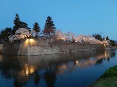一休みして、会津若松駅前(はよくわからず、118号線を南に歩いて最初のバス停)から鶴ヶ城の夜桜を見に行きました。