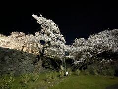 お腹いっぱいで、霞城公園の桜のライトアップに行ってみましたが、ちょっと思っていたものとは違い、明日の桜に期待してホテルへ帰ります。画像にするときれいですが、ライトが弱くて実際にはあまりきれいに見えませんでした。