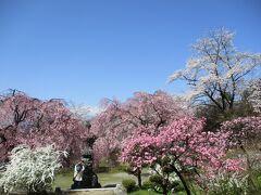 道中ふと見えた「桃源院」があまりに素敵で、早くも脱線。