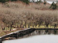 覚満淵 春風景  「冬風景だろ」って? いえいえ!冬には雪と氷の別世界 立派な春の風景です(o^^o)