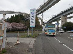展望台入口バス停には7時35分に到着。 料金は350円なり。  ここからのんびりと歩いて糸山公園の展望台を目指します。  頭上を高速道路が入り乱れてるw  まるでヤマタノオロチみたいだ。 かっこいいやら恐ろしげやら。 すごい迫力!